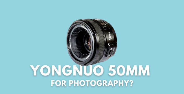 Should You Buy a Yongnuo 50 mm f1.8 Lens for Photography?