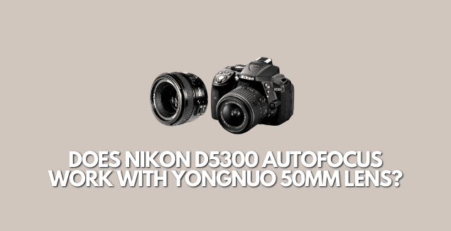 Does Nikon D5300 autofocus work with Yongnuo 50mm?